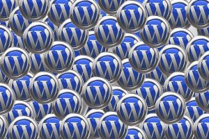 Wordpress site internet pau